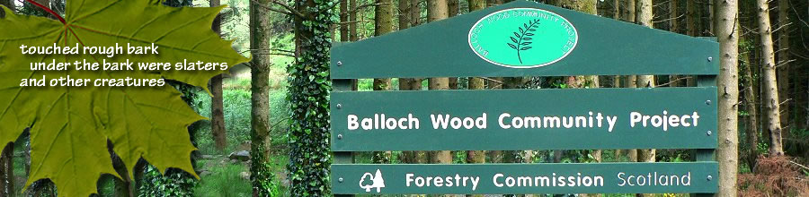 Forestry Commission Scotland and Balloch Community Woodland